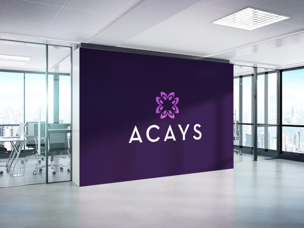 Sample branding #3 for Acays