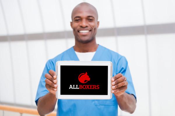 Sample branding #2 for Allboxers