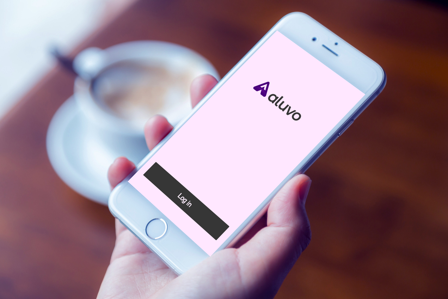 Sample branding #2 for Aluvo