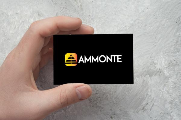 Sample branding #2 for Ammonte