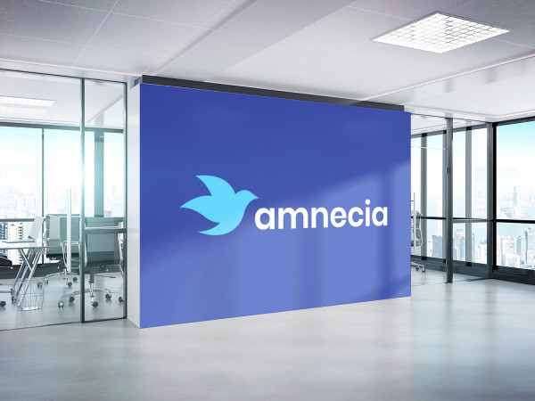 Sample branding #3 for Amnecia