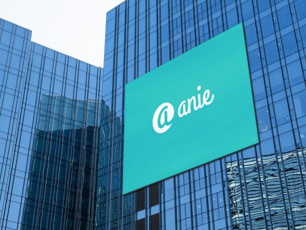 Sample branding #1 for Anie