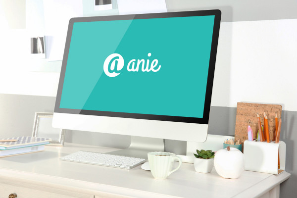 Sample branding #2 for Anie