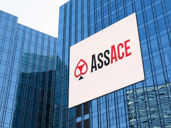 Sample branding #3 for Assace