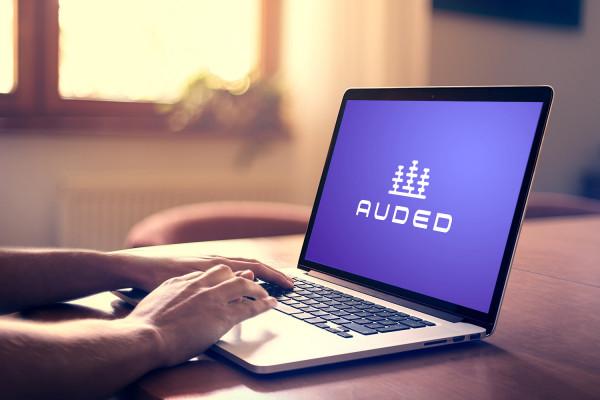 Sample branding #3 for Auded