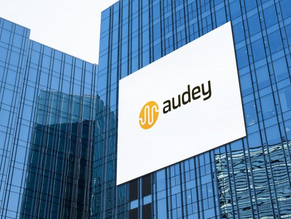 Sample branding #2 for Audey