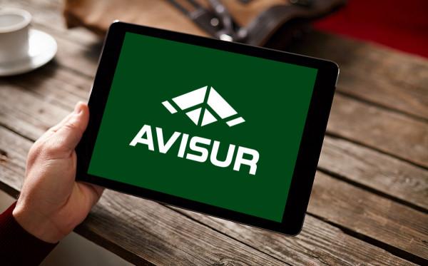 Sample branding #3 for Avisur