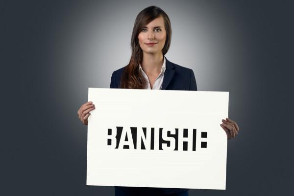 Sample branding #3 for Banishe