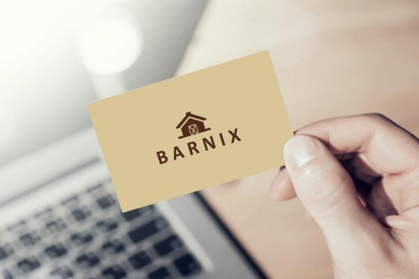 Sample branding #1 for Barnix