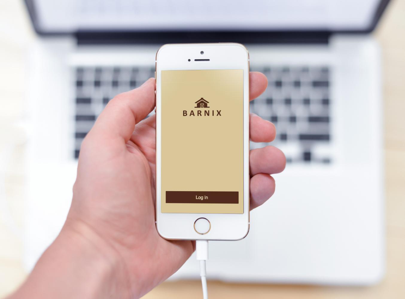 Sample branding #3 for Barnix