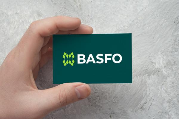 Sample branding #3 for Basfo