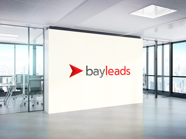 Sample branding #2 for Bayleads