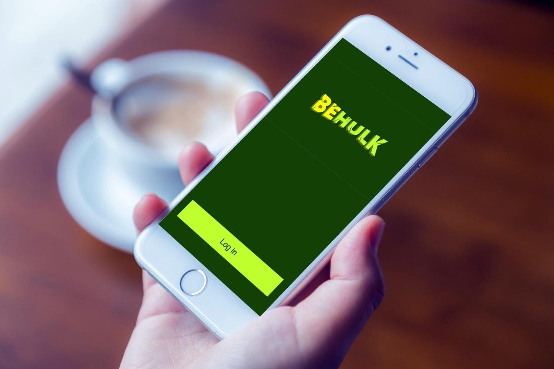 Sample branding #2 for Behulk