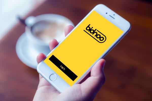 Sample branding #1 for Bidnoo