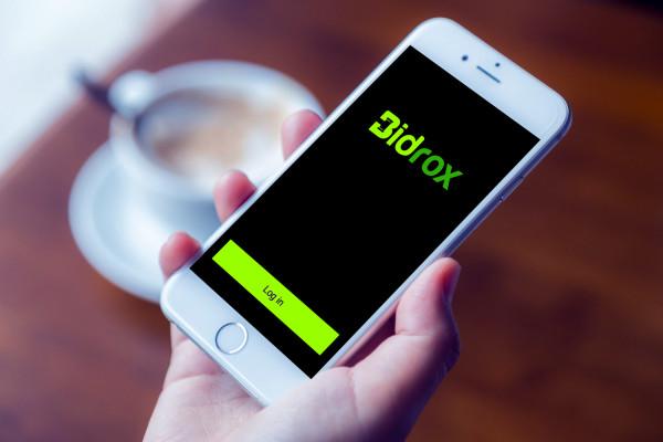Sample branding #1 for Bidrox