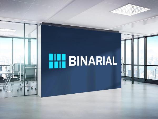 Sample branding #3 for Binarial