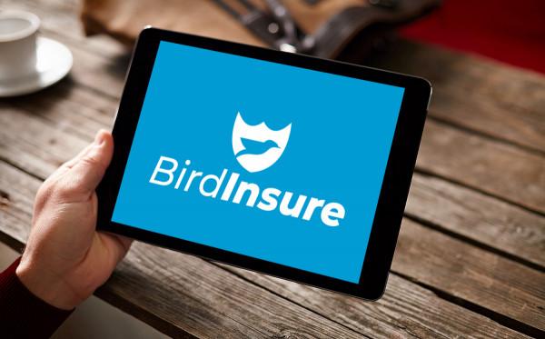 Sample branding #1 for Birdinsure