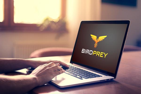 Sample branding #3 for Birdprey