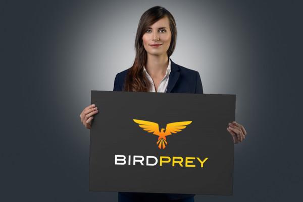 Sample branding #1 for Birdprey