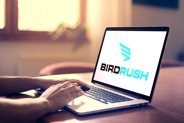 Sample branding #1 for Birdrush