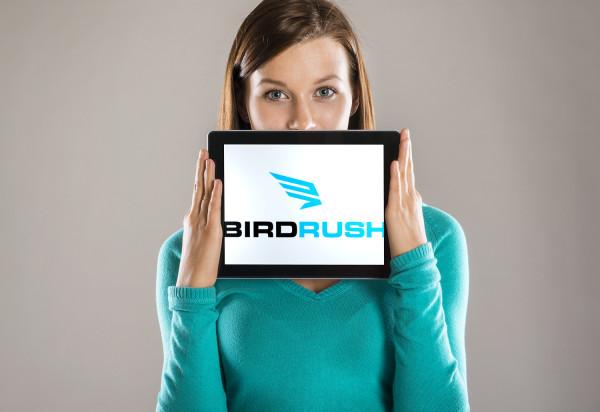 Sample branding #2 for Birdrush