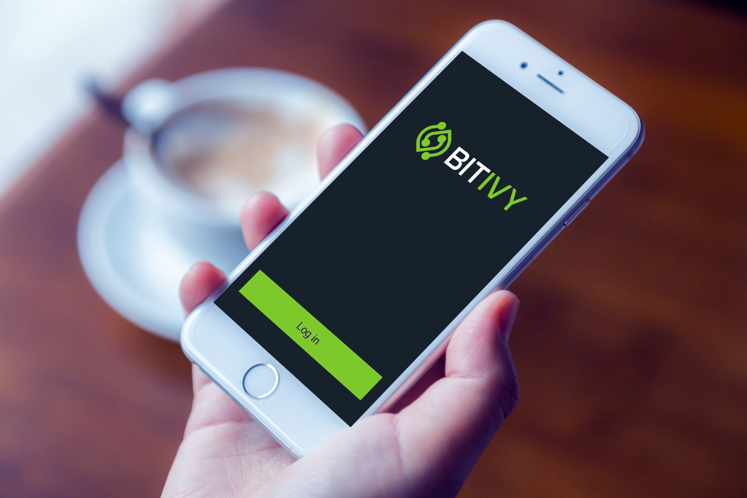 Sample branding #2 for Bitivy