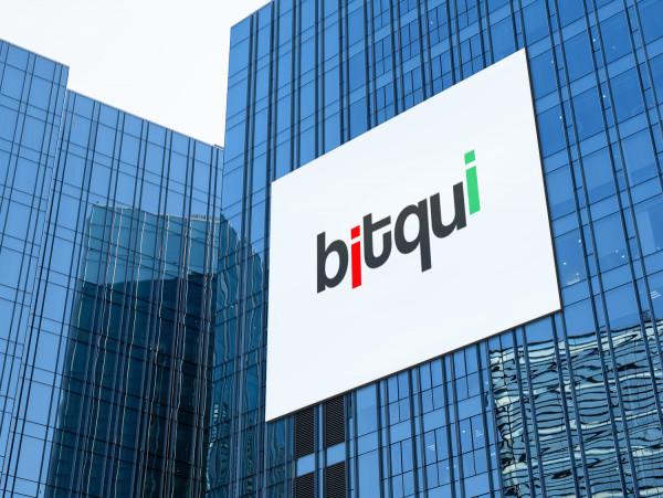 Sample branding #3 for Bitqui