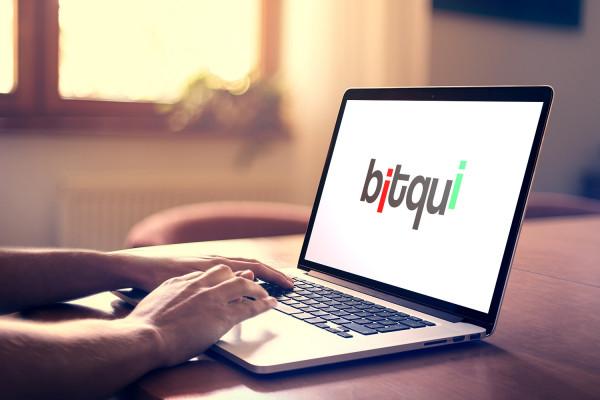 Sample branding #1 for Bitqui
