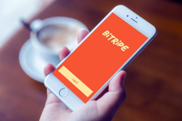 Sample branding #3 for Bitripe