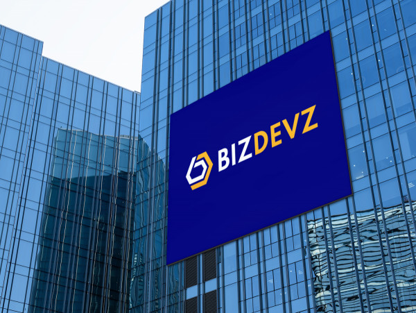 Sample branding #1 for Bizdevz