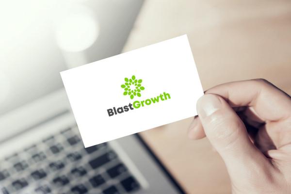Sample branding #2 for Blastgrowth