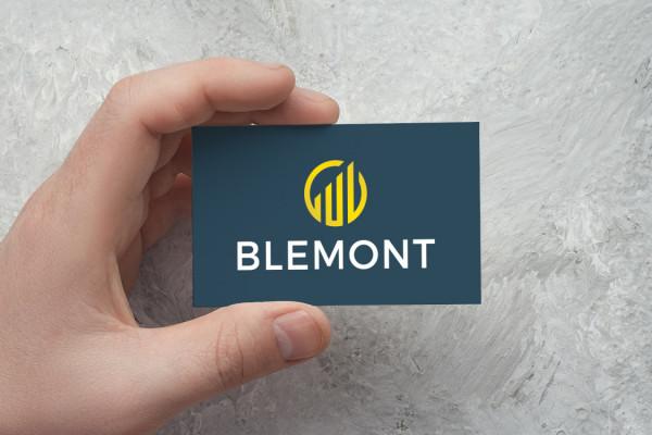 Sample branding #3 for Blemont