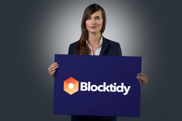 Sample branding #1 for Blocktidy
