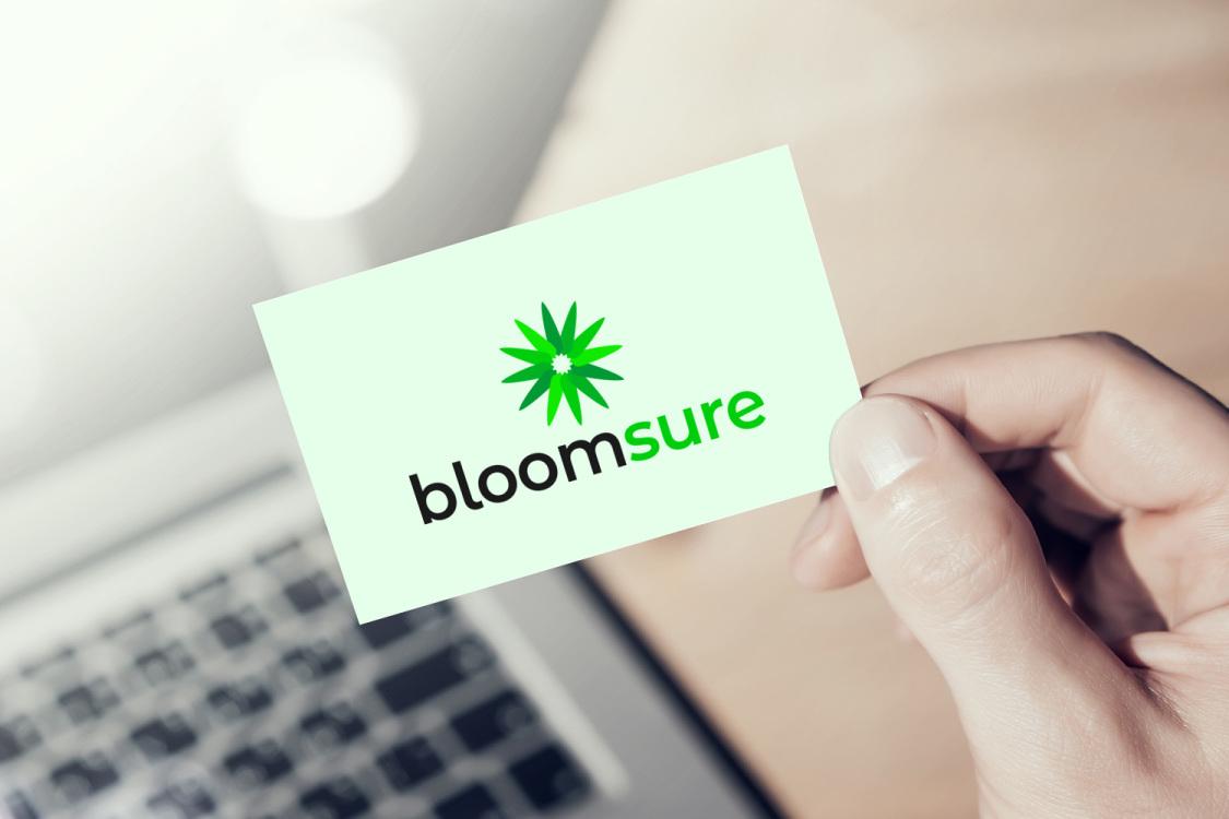 Sample branding #1 for Bloomsure
