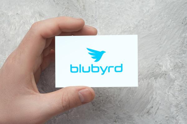 Sample branding #1 for Blubyrd