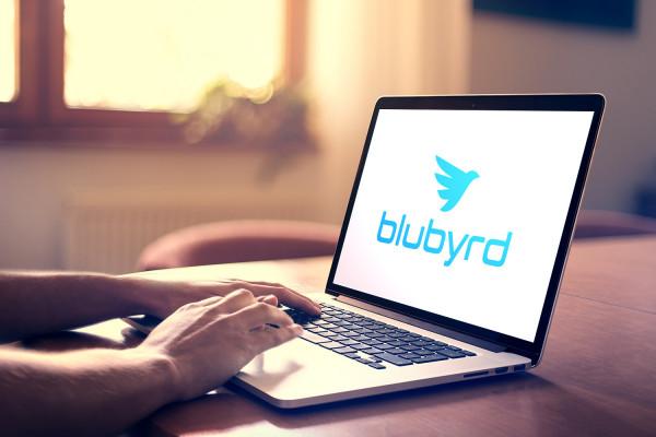 Sample branding #3 for Blubyrd