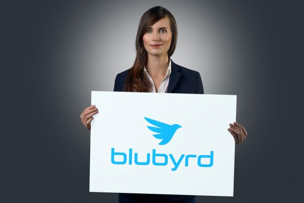 Sample branding #2 for Blubyrd