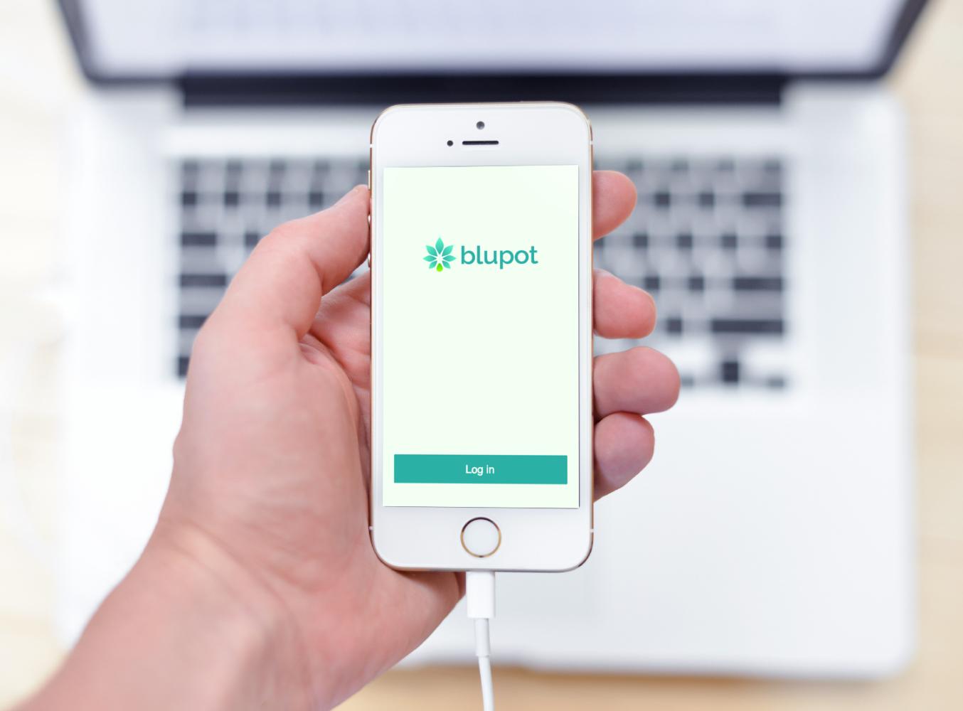 Sample branding #3 for Blupot