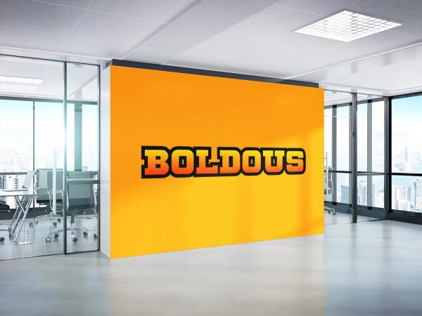 Sample branding #2 for Boldous