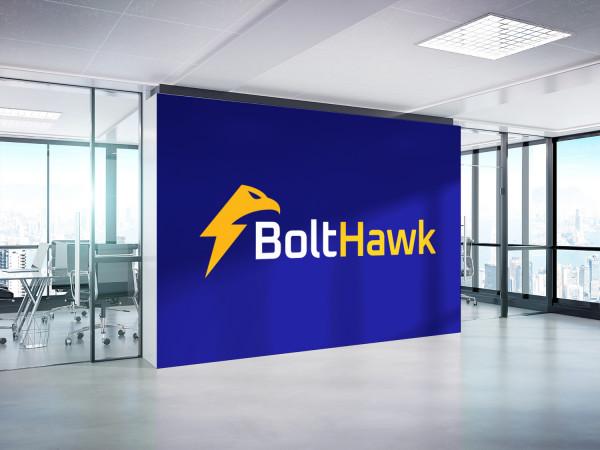 Sample branding #3 for Bolthawk