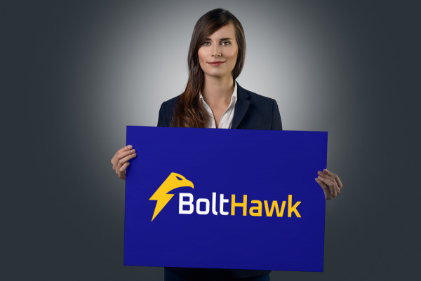 Sample branding #1 for Bolthawk