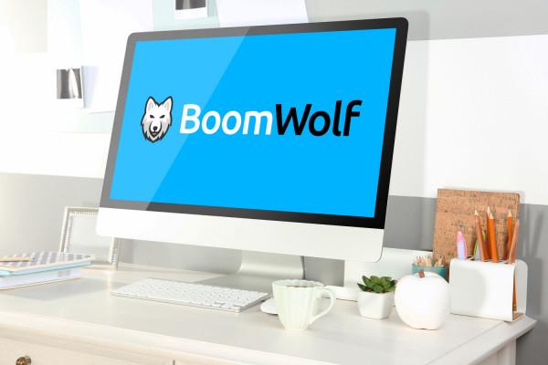 Sample branding #2 for Boomwolf