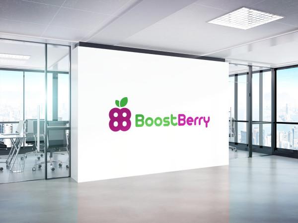 Sample branding #3 for Boostberry