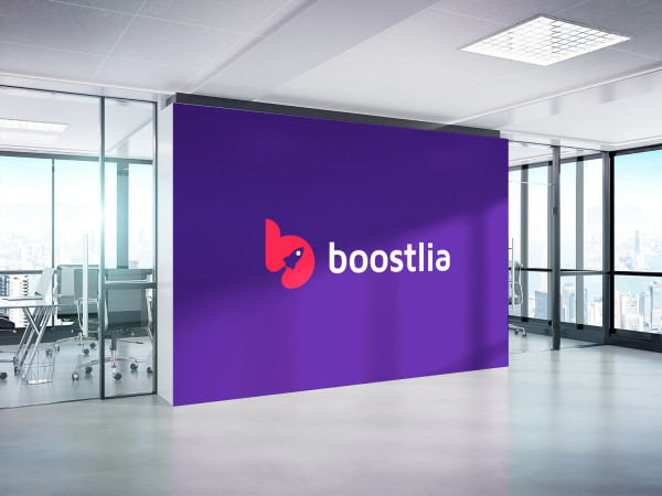 Sample branding #2 for Boostlia