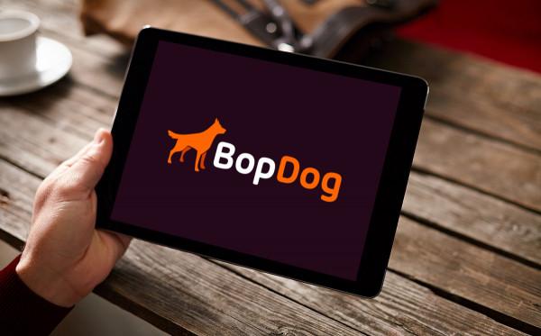 Sample branding #2 for Bopdog