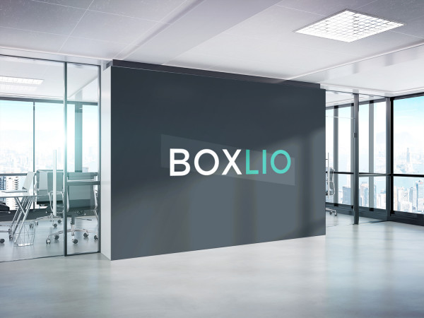 Sample branding #2 for Boxlio