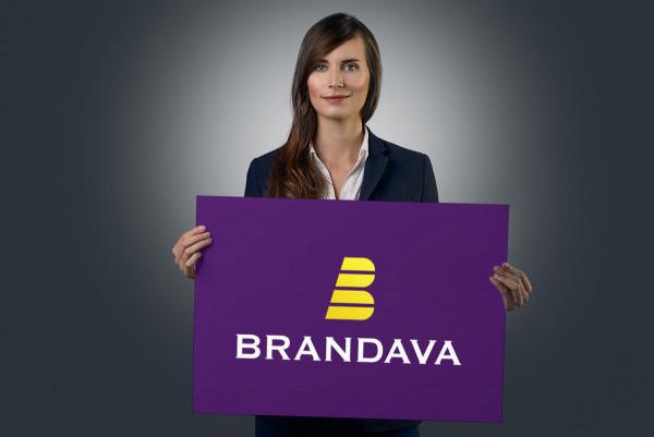 Sample branding #1 for Brandava