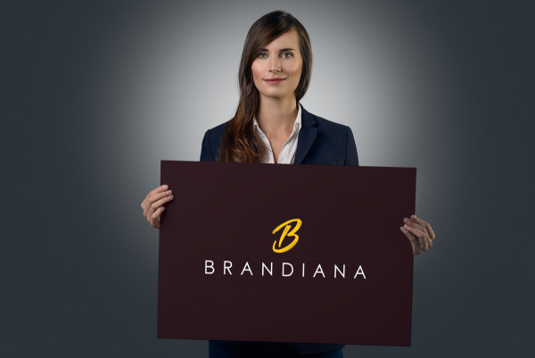 Sample branding #2 for Brandiana
