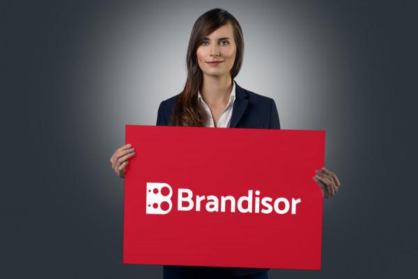 Sample branding #3 for Brandisor
