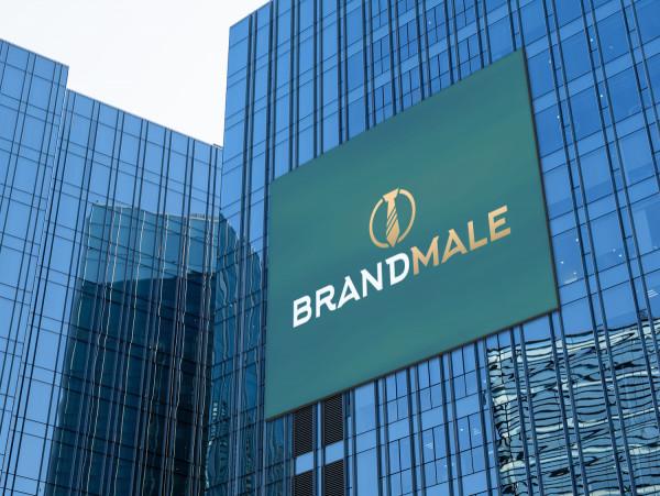 Sample branding #3 for Brandmale